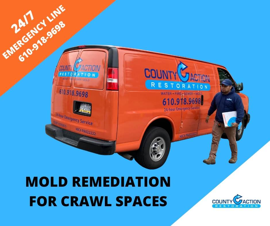 Mold Remediation Crawl Spaces